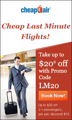 Cheap Last Minute Flights! Take up to $20? off with Promo Code LM20. Book Now!