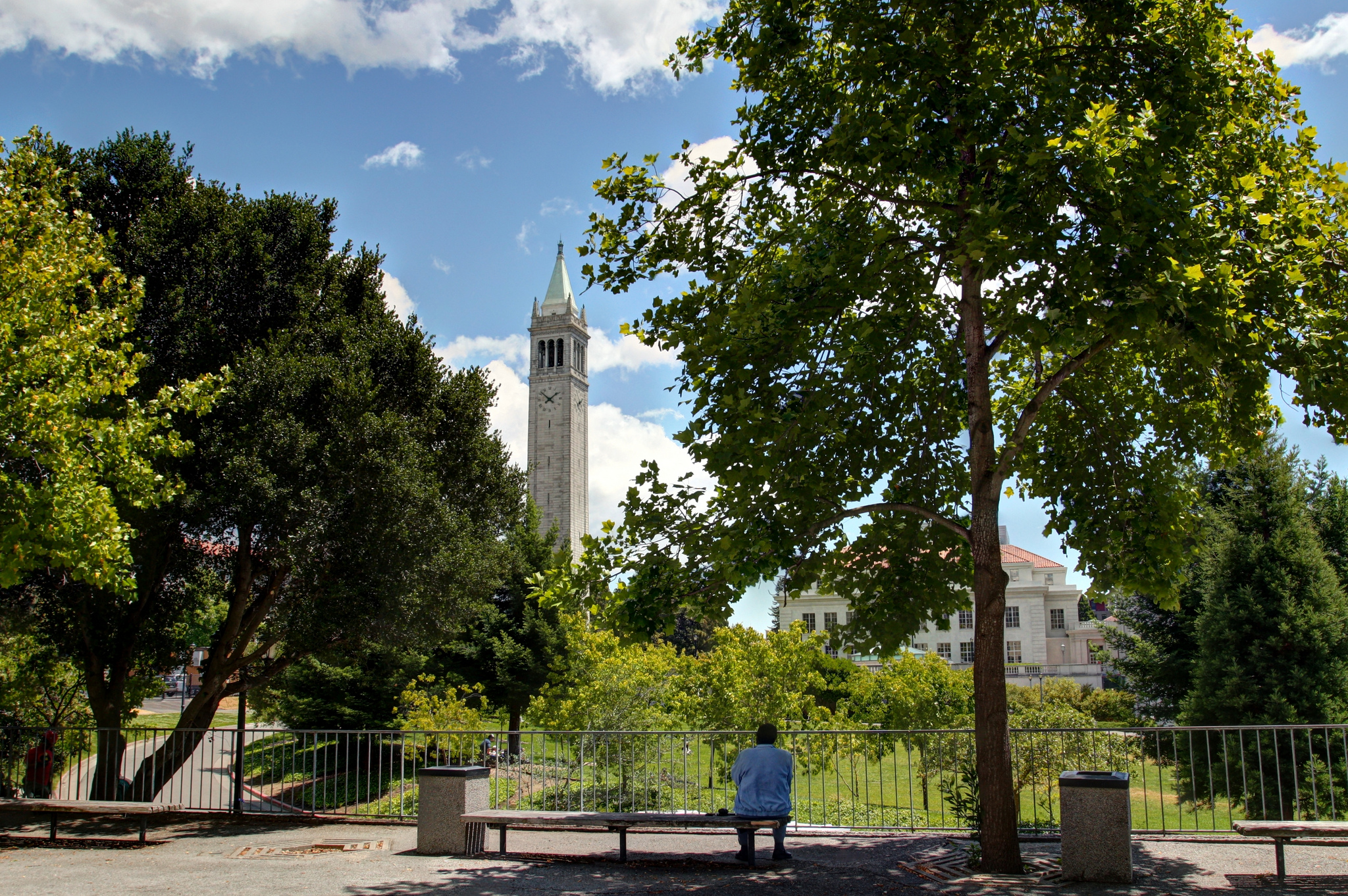 Scenes from UC Berkeley - Man on Bench by John Morgan is Licensed under CC by 2.0
