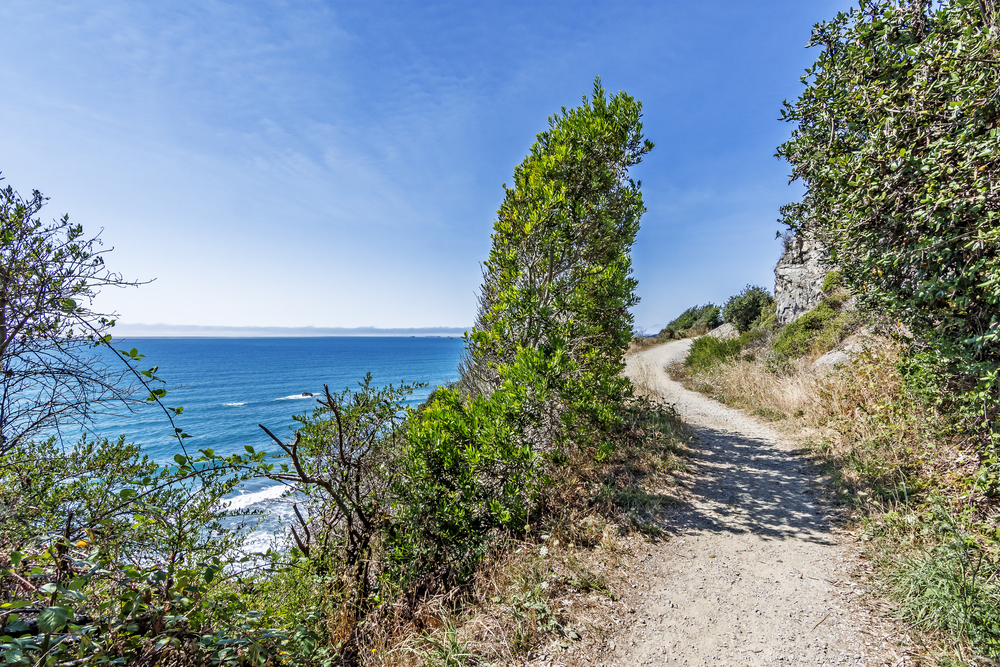 Walking down an old secluded beach trail, perched high on a steep jagged cliff, you see blue & aquamarine seas, surf crashing on a rocky / sandy Northern California beach at the end of Enderts trail.