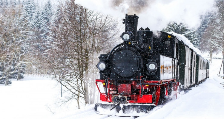 You Ve Got To Ride These Festive Holiday Trains Miles Away