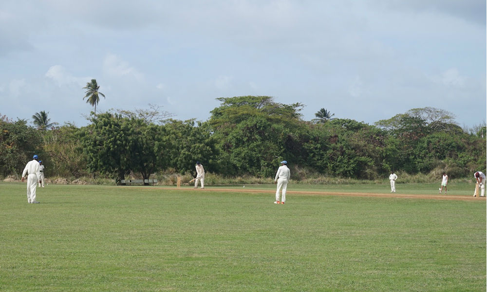 a game of cricket in barbados
