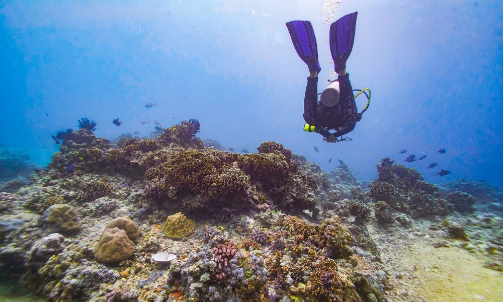 Diver enjoying the underwater sites, The Gili Islands, Lombok Indonesia