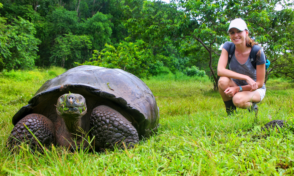 Galapagos giant tortoise with young woman (blurred in background) sitting next to it on Santa Cruz Island in Galapagos National Park, Ecuador.