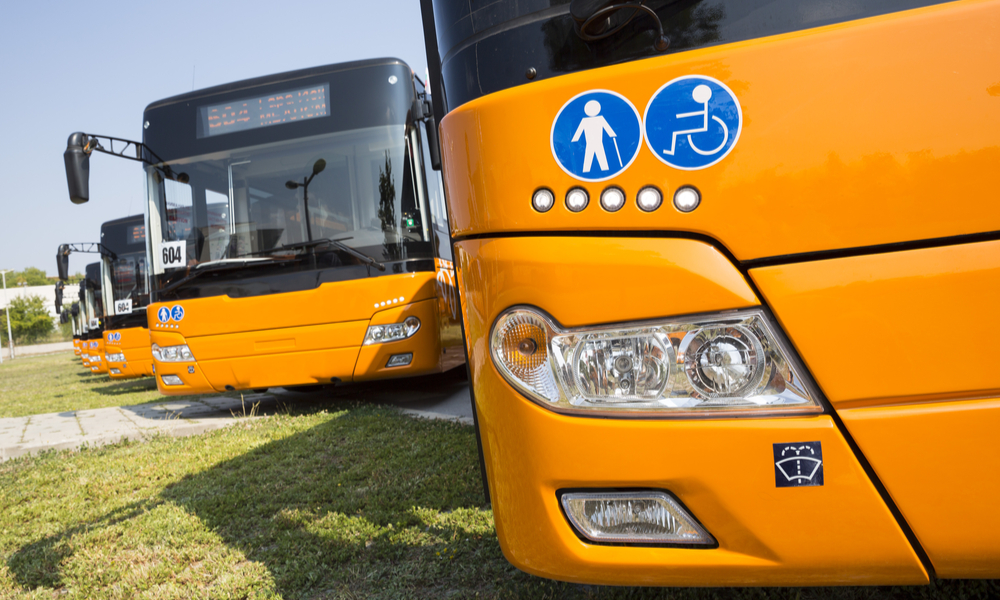 New modern busses for public transportation are shown in a row in a parking lot. Physically disabled people and old people signs.