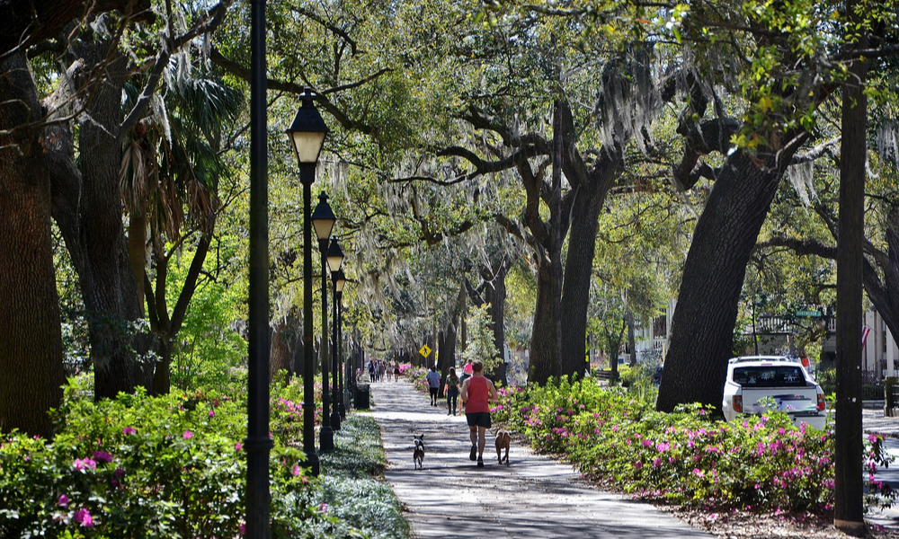 The best fall family vacations: Beautiful old trees and walking paths through the parks in Savannah Georgia