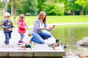 things to do in memphis with kids feed ducks