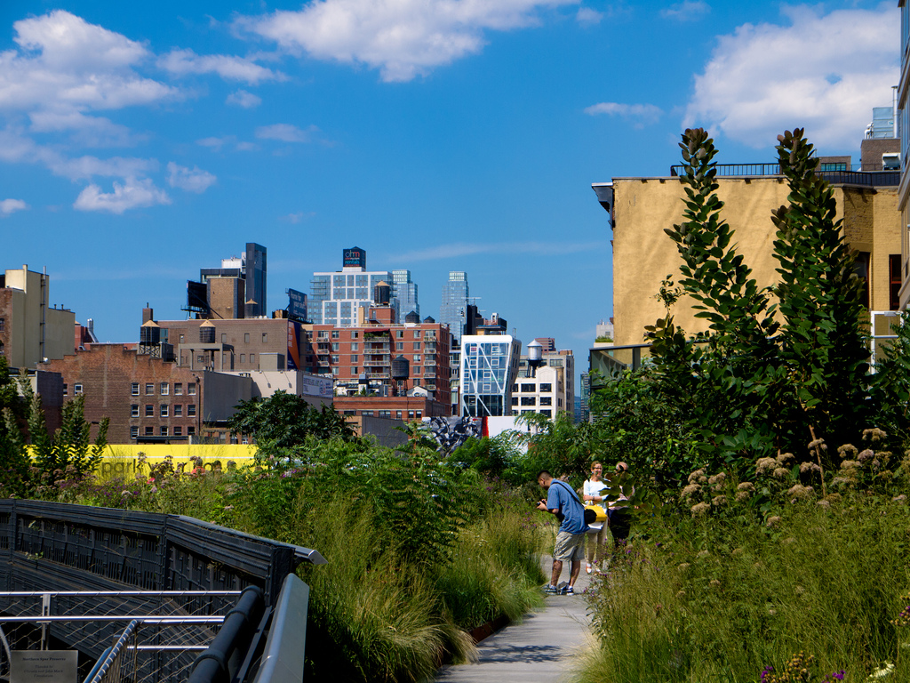 Highline Park in New York City (Flickr image courtesy of thefors)