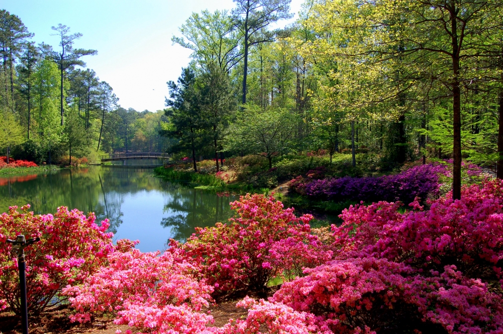 5 Easy Day Trips From Atlanta