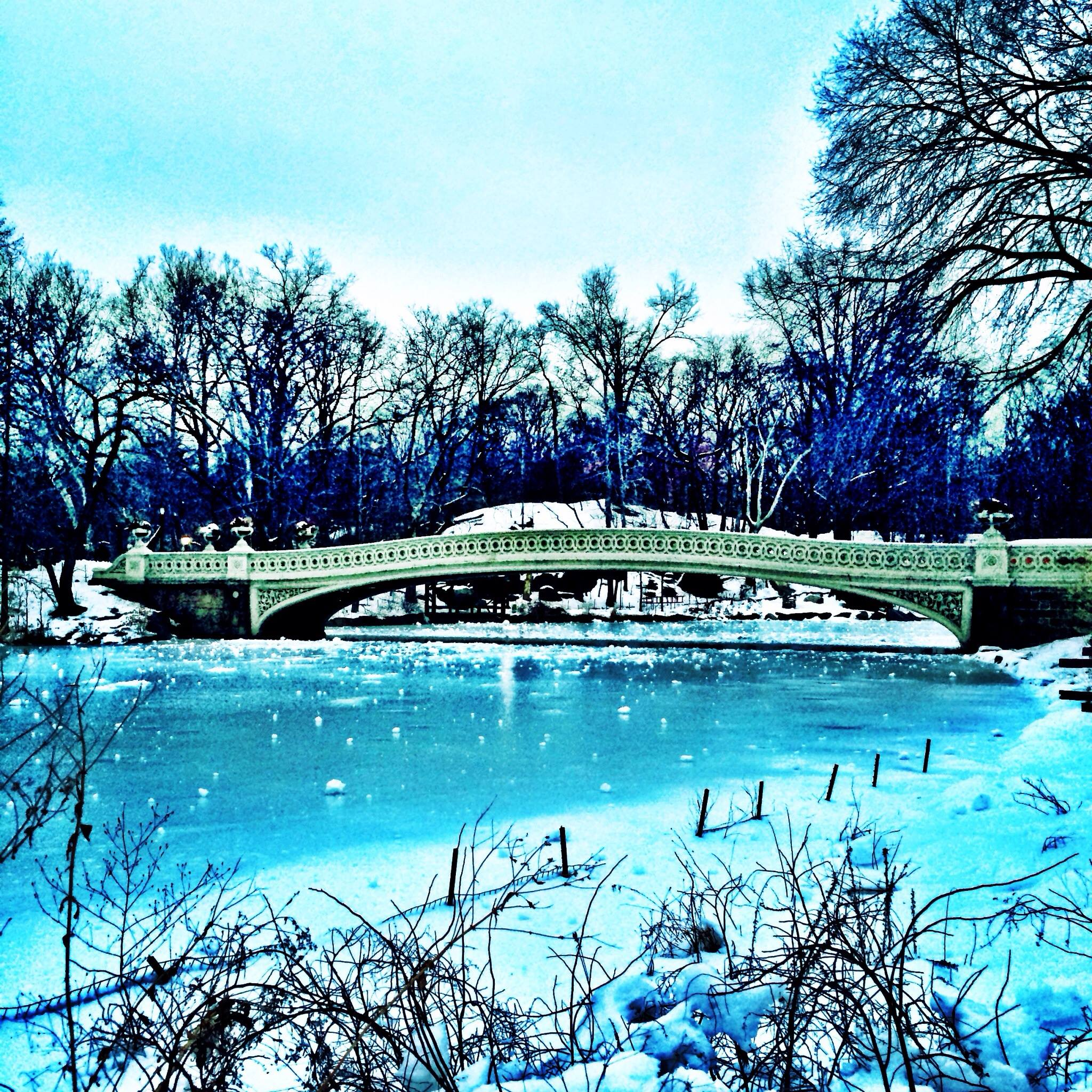 Central Park's Bow Bridge in winter