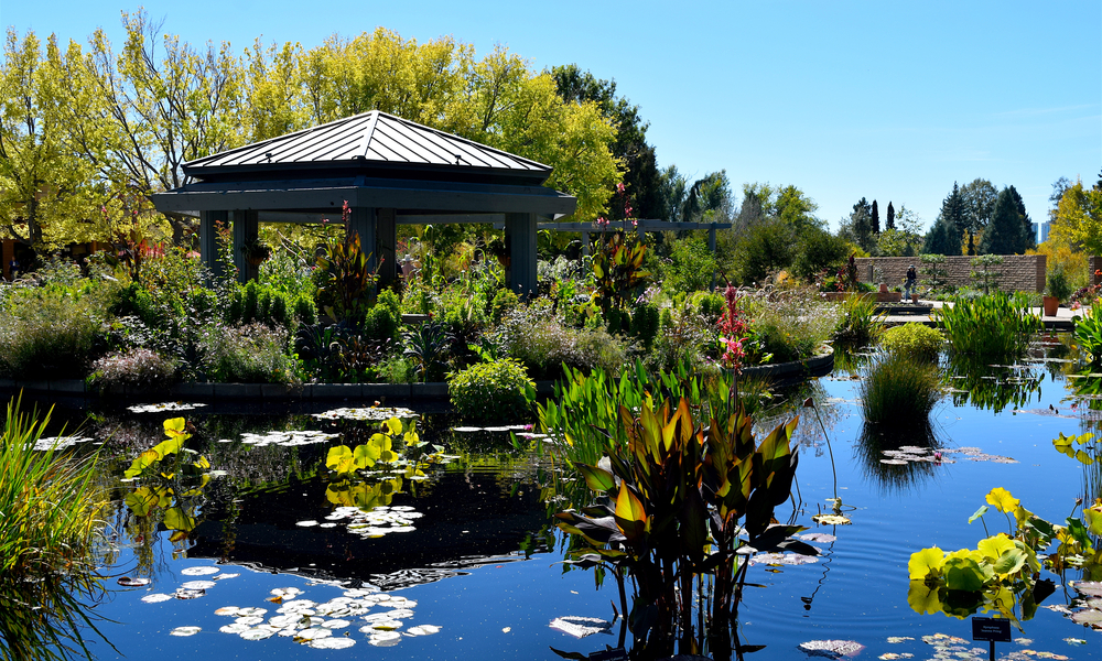 A Guide to the Romantic Side of Denver: Beautiful Scenic Botanic Gardens in Denver in the summer